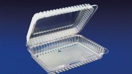 CHC-1073 10×7″ Oblong Clear Hinged Container